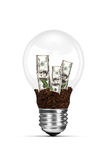 Light Bulb And Growing Dollar Bills Royalty Free Stock Photo