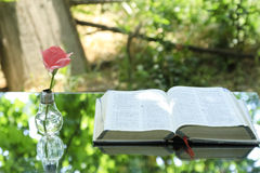 Light bulb with book Bible Stock Photography