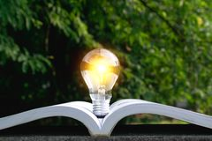 Light bulb on the book put in park nature background. Light bulb on the book put in park nature background royalty free stock photography