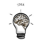 Light bulb brain idea hand drawn  on white background Royalty Free Stock Photos
