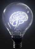 Light bulb brain Royalty Free Stock Images