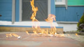 Light bulb is broken on the ground in slow motion.  stock footage