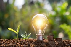 Light bulb with coins and young plant. saving. Concept royalty free stock photos