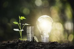 Light bulb with coins and young plant for saving money,financial,business or energy concept put on the soil in soft green nature. Background stock image