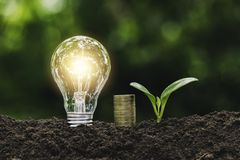 Light bulb with coins and young plant  for saving money,financial,business or energy concept put on the soil in soft green nature. Background royalty free stock images