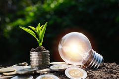 Coins and light bulb put on the wooden for saving money,energy c. Oncept in dark background royalty free stock photography