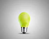 Light bulb concept Stock Image