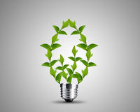 Light bulb concept Stock Image