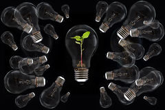 Light bulb. Concept and idea save more powers the World Royalty Free Stock Photography