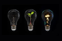 Light Bulb. Concept and Idea for save a power in the world Stock Images