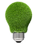 Light bulb covered with green grass. Royalty Free Stock Photography