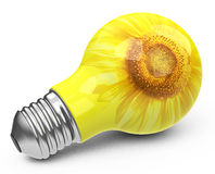 The light bulb Royalty Free Stock Photo