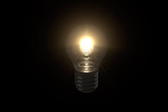 Light Bulb 3D Model / Black Background Royalty Free Stock Photo