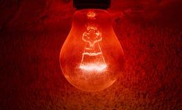 Light bulb. Light in the dark wall night light electricity Royalty Free Stock Photos