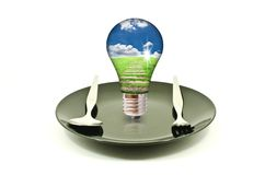 Light bulb on dish isolated. Stock Photos