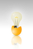 Light bulb egg Royalty Free Stock Images