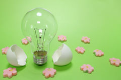 Light bulb and the egg shell in the spring mood Royalty Free Stock Photography