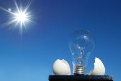 Light bulb and the egg shell in the sunshine Royalty Free Stock Photography