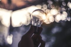 Light bulb Fantasy royalty free stock photo