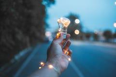 Light bulb Fantasy stock images