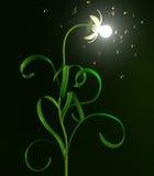 Light bulb flower Stock Image