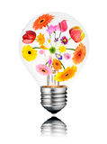 Light Bulb with Flowers Growing  Inside Isolated. Light Bulb with Various Colorful Flowers Growing Inside from Center to the Edges. Isolated White Background Royalty Free Stock Photography