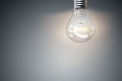 The light bulb in fresh ideas concept Royalty Free Stock Images
