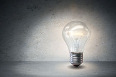 The light bulb in fresh ideas concept Stock Image