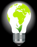 Light bulb with a globe and a green plant. On a black background Stock Photo