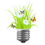Light bulb with grass Stock Photo