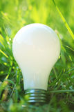 Light bulb in grass Royalty Free Stock Photography