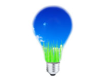 Light bulb with grass and sky inside Royalty Free Stock Photo