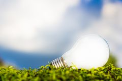 Light bulb on grasses Royalty Free Stock Photos