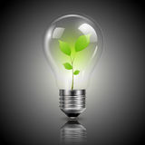 Light bulb green Royalty Free Stock Photos