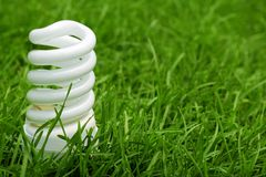 Light bulb on green grass Stock Photo
