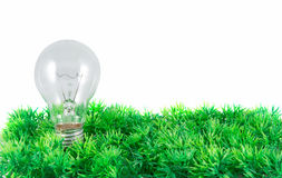 Light bulb on green grass Royalty Free Stock Image
