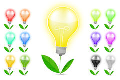 Light bulb and green leaf Stock Image