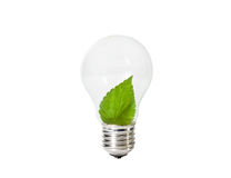 Light Bulb with green leaf inside Royalty Free Stock Images