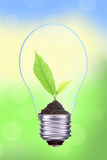Light bulb with green leaves inside on green bokeh backgro Stock Photos