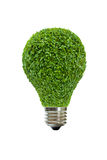 Light bulb of green leaves Royalty Free Stock Photo