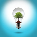 Light bulb with green tree Stock Image