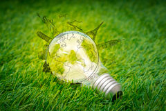 Light bulb grow in the grass  with travel place (Japan,France,It Stock Image