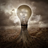 Light Bulb Growing an Idea in Nature. A light bulb is growing as a tree in a dark nature scene with roots for an energy or idea concept Stock Photos