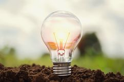 Light bulb growing in soil concept idea power energy. In nature Royalty Free Stock Photography