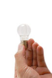 The light bulb in hand Royalty Free Stock Photo