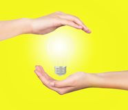 Light bulb hand Stock Photos