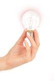 Light Bulb in Hand Stock Image