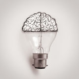 Light bulb with hand drawn brain as creative idea Royalty Free Stock Photos