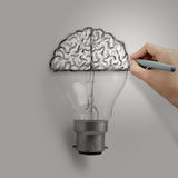 Light bulb with hand drawn brain Stock Images