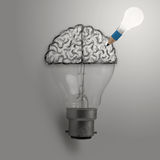 Light bulb with hand drawn brain as creative idea Royalty Free Stock Image